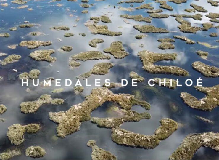 Los humedales de Chiloé