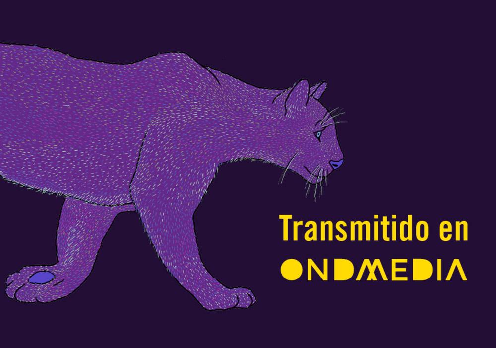 Santiago Wild: el primer festival de cine de vida salvaje y medioambiente de Chile